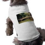 Romance del Central Park - puente del arco - New Y Camisa De Perro
