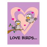 Romance diario: Pájaros del amor Postal