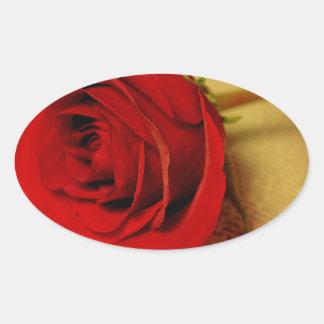 Romance in Literature Oval Sticker