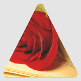 Romance in Literature Triangle Sticker