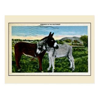 Romance in the Southwest, love Postcard