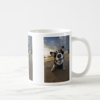 Romance Instructor Mugs