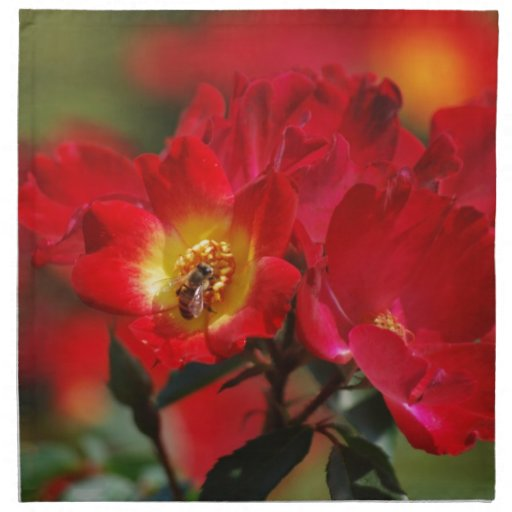 Romancing the Bee Napkins