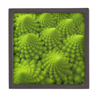 Romanesco Broccoli Fractal Vegetable Gift Box
