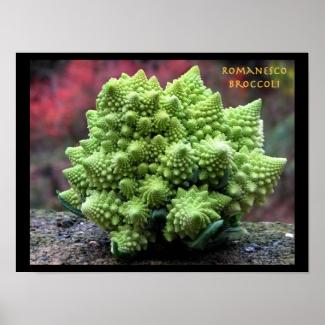 Romanesco Broccoli Vegetable