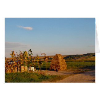 Romania, Agricultural area with a haystack Card