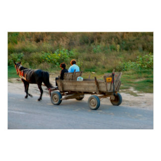 Romania, horse and cart poster