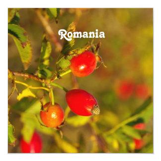 Romania 5.25x5.25 Square Paper Invitation Card