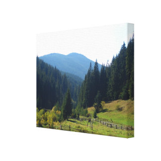 Romania, Moldova,countryside Canvas Print