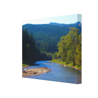 Romania, River and pine forests in the mountains Canvas Print
