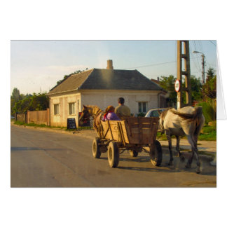 Romania, Transport, teaching the new horse Card