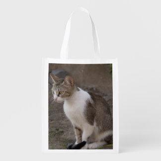 Romania, Transylvania, Sighisoara. Pet cat. Grocery Bag
