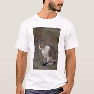 Romania, Transylvania, Sighisoara. Pet cat. T-Shirt