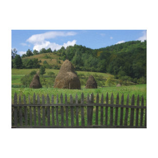 romanian mountainside canvas print