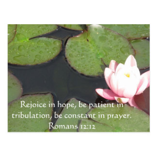 Romans 12 12 Bible Verse About Hope Postcard