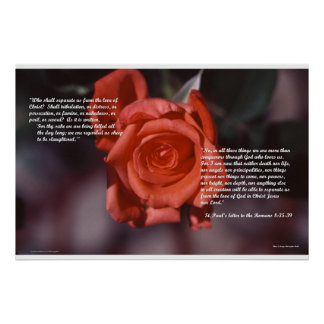 Romans 8 Rose Poster