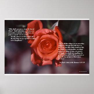 Romans 8 Rose Poster