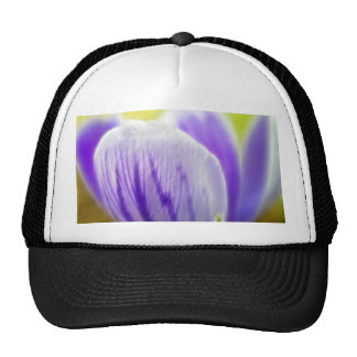 Romantic And Dreamy Crocus Hats