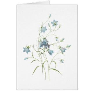 romantic blue blossoms water color card