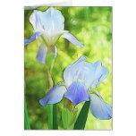 Romantic Blue Irises Greeting Card