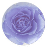 Romantic Blue Rose Plate
