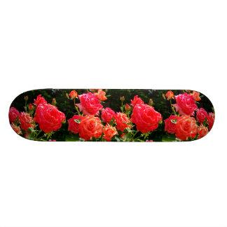 Romantic Coral Roses Skateboard