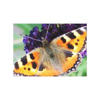 Romantic Elegant Butterfly Blossoms Canvas Print