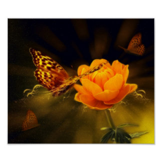 Romantic Elegant Butterfly Blossoms Poster