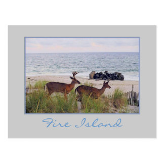 'Romantic Evening Stroll Along the Beach' Postcard