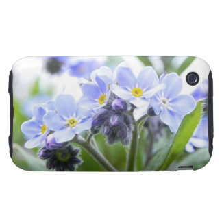 Romantic Forget Me Nots iPhone 3 Tough Covers