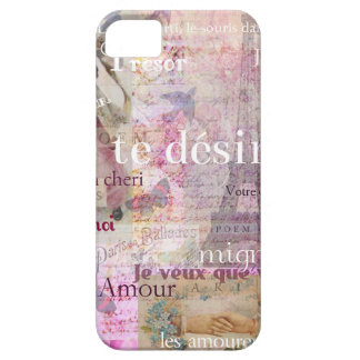 Romantic French Love Phrases Vintage Paris Art iPhone 5 Cases
