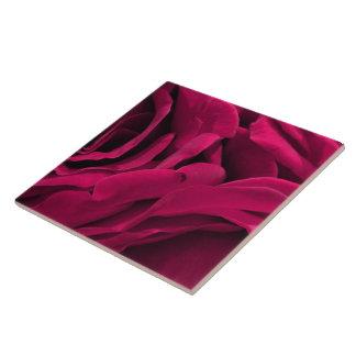Romantic fuchsia pink velvet roses floral photo ceramic tile
