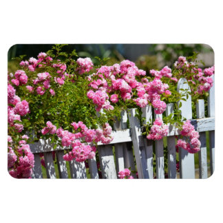 Romantic Garden of Roses Rectangular Photo Magnet