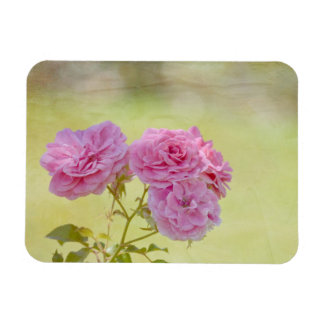 Romantic Garden Roses Rectangular Photo Magnet