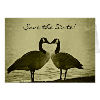 Romantic Geese Save the Date Card