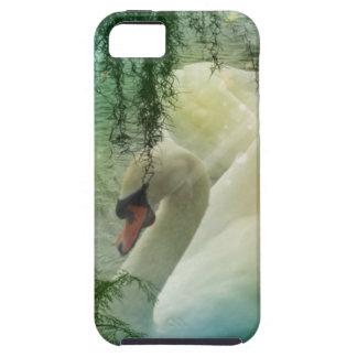 Romantic Lake Swimming White Swans iPhone SE/5/5s Case