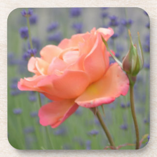 Romantic Lavender and Rose Drink Coaster