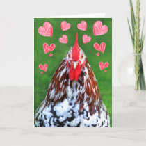 Romantic Manly Rooster Valentine's Day Holiday Card