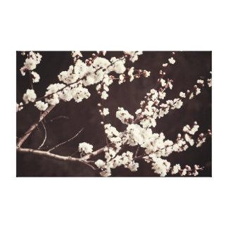 Romantic Mood - Soft Tones, Cherry Blossoms Stretched Canvas Print