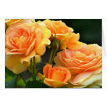 Romantic Peach Rose Floral Greeting Card