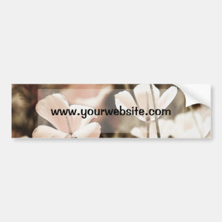 Romantic Pink Flowers Photograph, Nature Forals Bumper Sticker