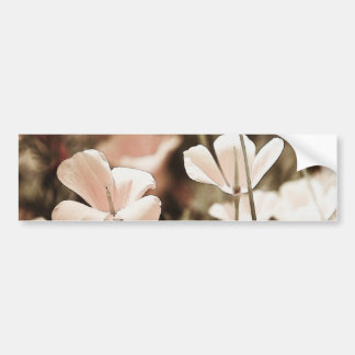 Romantic Pink Flowers Photograph Nature Forals Bumper Stickers