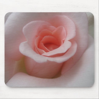 Romantic Pink Rose Blossoms Mouse Pad