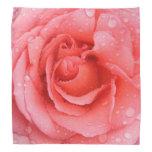 Romantic Pink Rose Water Drops Bandana