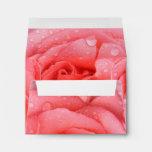 Romantic Pink Rose Water Drops Envelope