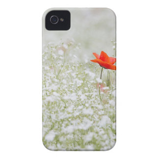 Romantic Poppy Flower Red White Meadow Case-Mate iPhone 4 Case