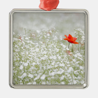 Romantic Poppy Flower Red White Meadow Metal Ornament