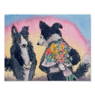 Romantic poster, Border Collie giving flowers Poster