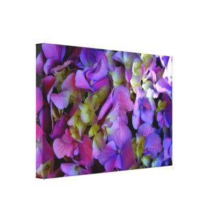 Romantic Purple Hydrangeas Canvas Print