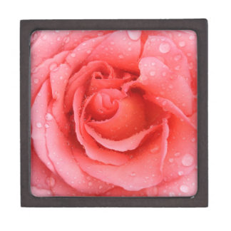 Romantic Red Pink Rose Water Drops Jewelry Box